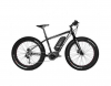 BICICLETA ELECTRICA ZT-88 (FAT BIKE)